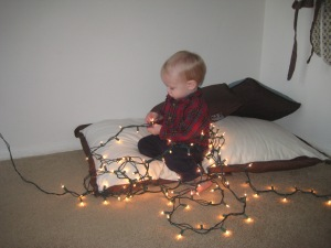 "We took down the Christmas decorations, and Lewis needed to ""inspect"" the lights."